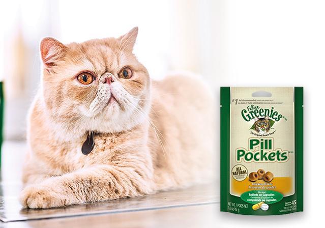 Greenies Feline Pill Pockets